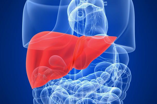 Нормы вирусной нагрузки при гепатитах