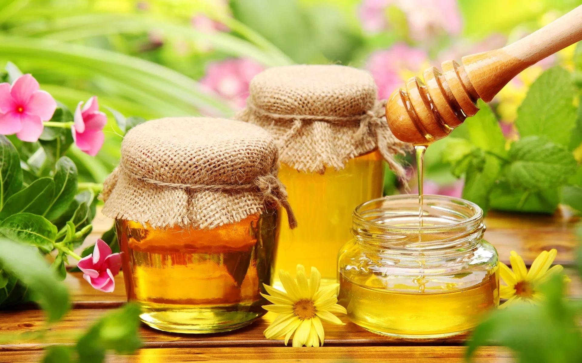 Можно ли кушать мед когда на диете